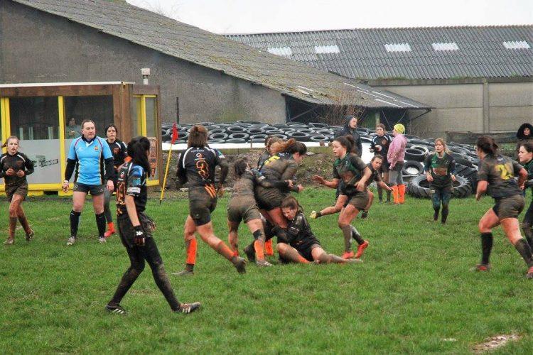 Tiegem Tigers Rugby FC 5