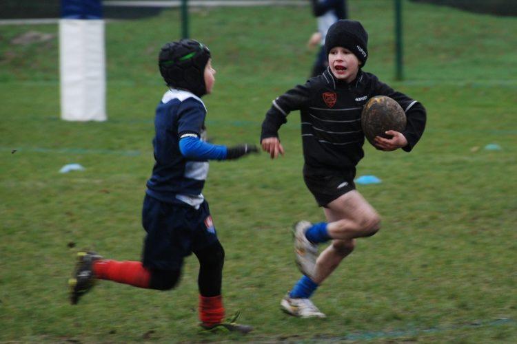 Tiegem Tigers Rugby FC 7